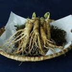 Extract of Panax Ginseng Root